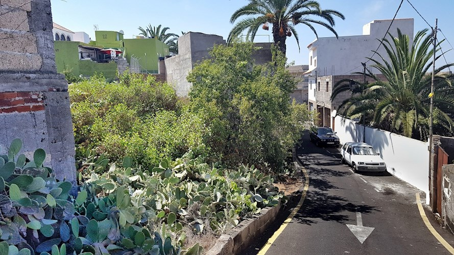 Rustic Plot For sale in Guia de Isora, Tenerife